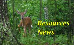 Deer and Resources News name